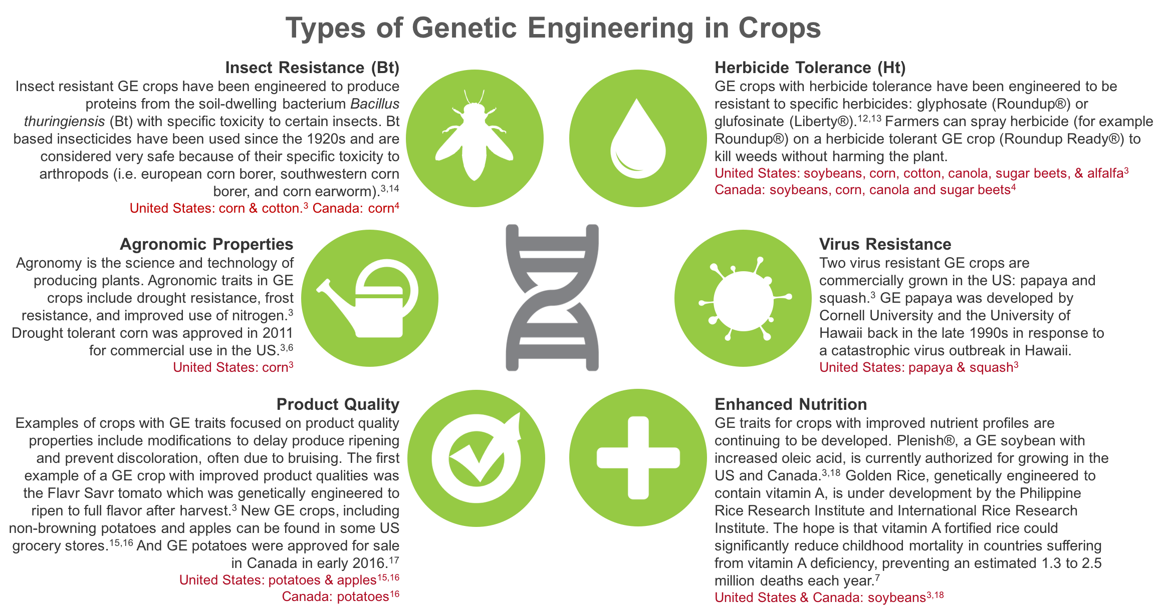 Genetic Engineering Traits in Food Crops: Insect Resistance, Herbicide Tolerance, Agronomic Properties, Virus Resistance, Product Quality, and Enhanced Nutrition. www.feedthemwisely.com