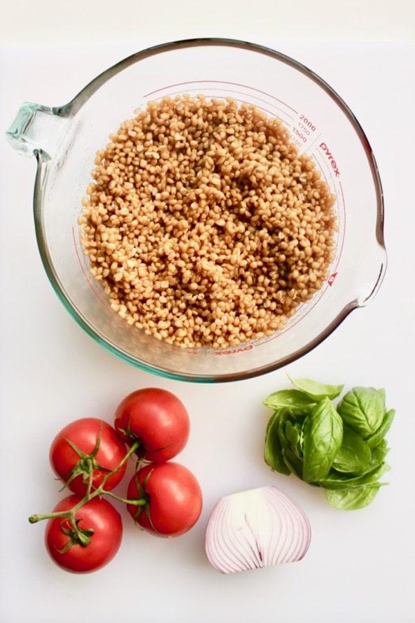 ingredients for whole grain bruschetta salad