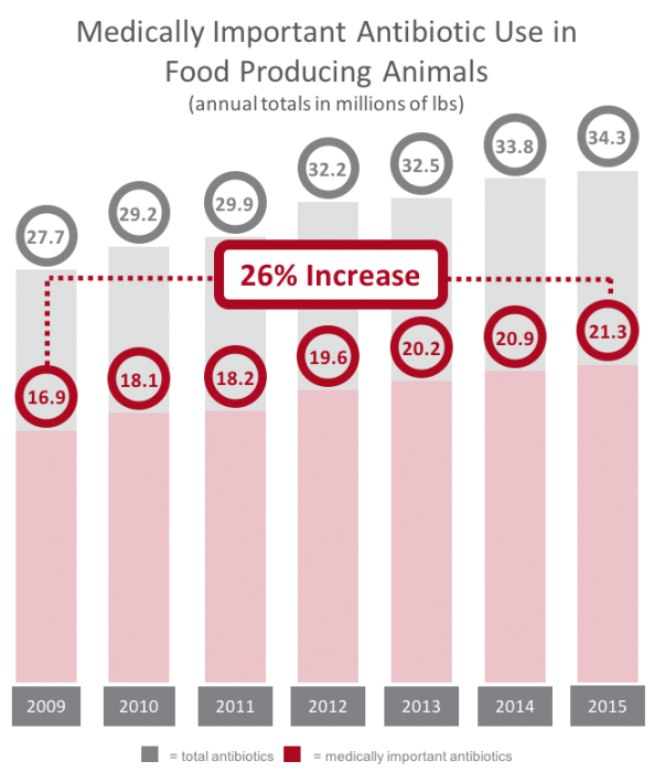 medically important antibiotic use in food producing animals