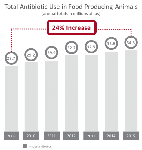 total antibiotic use in food producing animals
