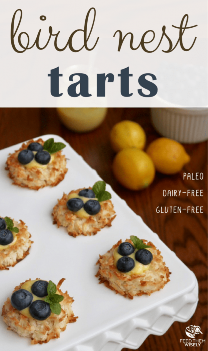 Macaroon Bird Nest Tarts Pin