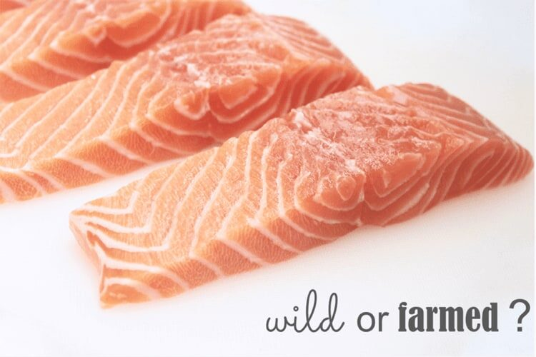 nutritional comparison of farmed and wild salmon