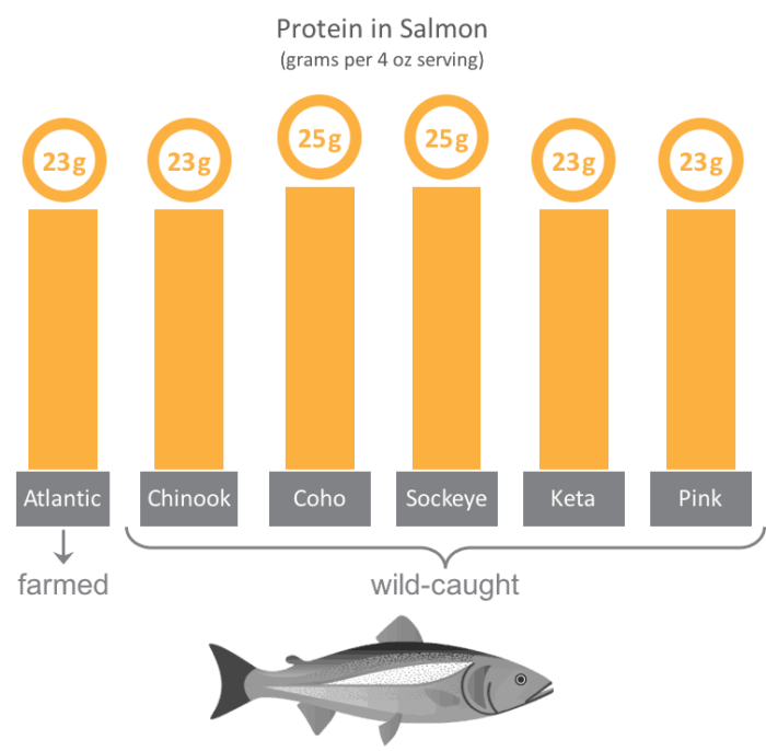 how much protein is in salmon