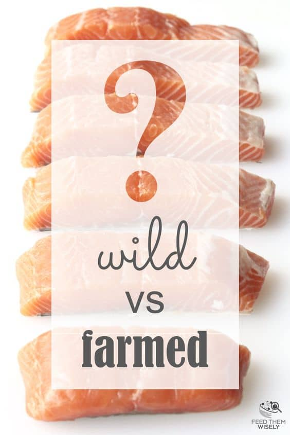 which is healthier wild or farmed salmon